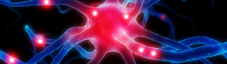 Huntington's disease affects the nervous system.