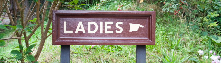 Sign pointing to ladies toilet.